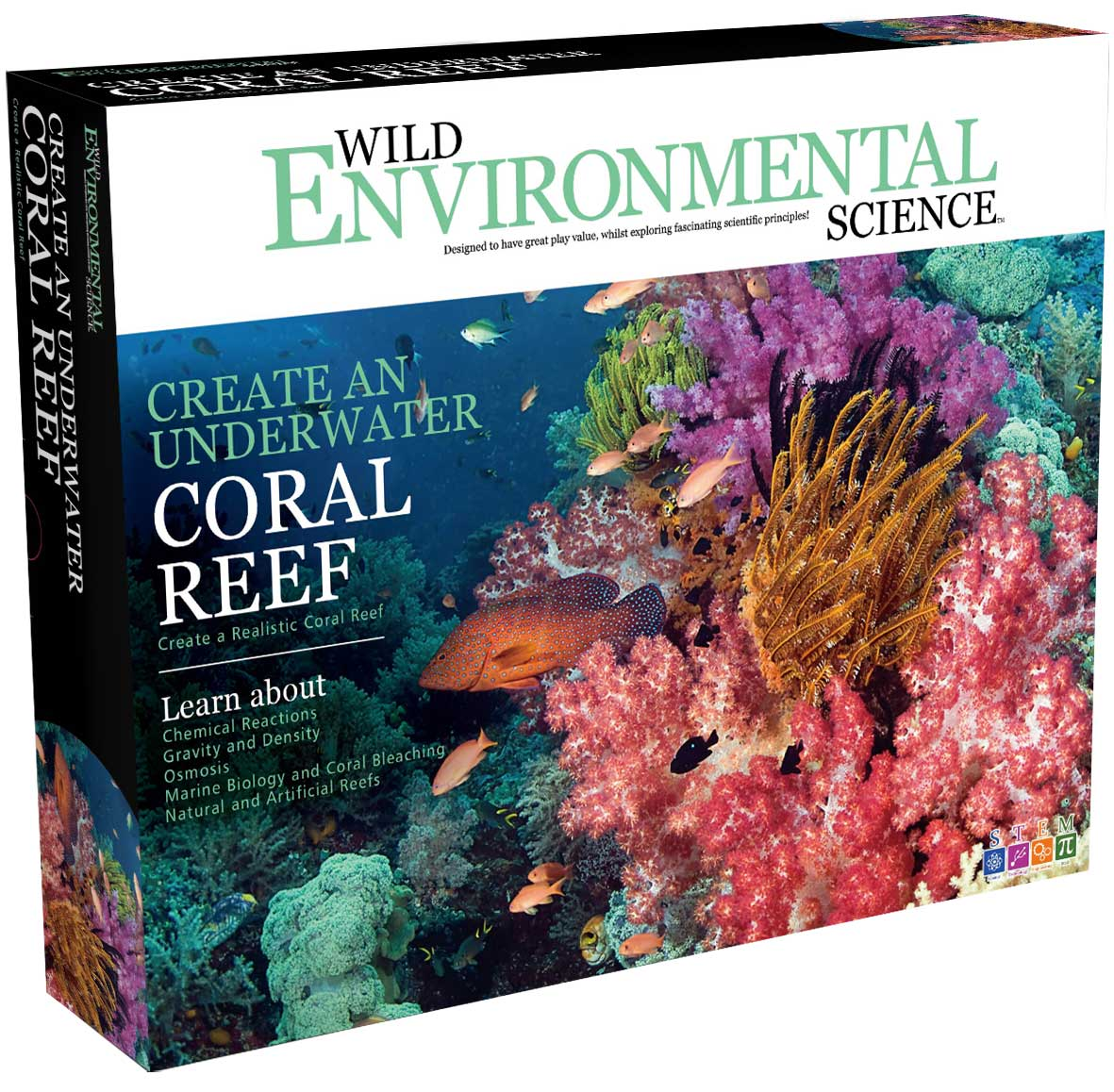 Create a Coral Reef
