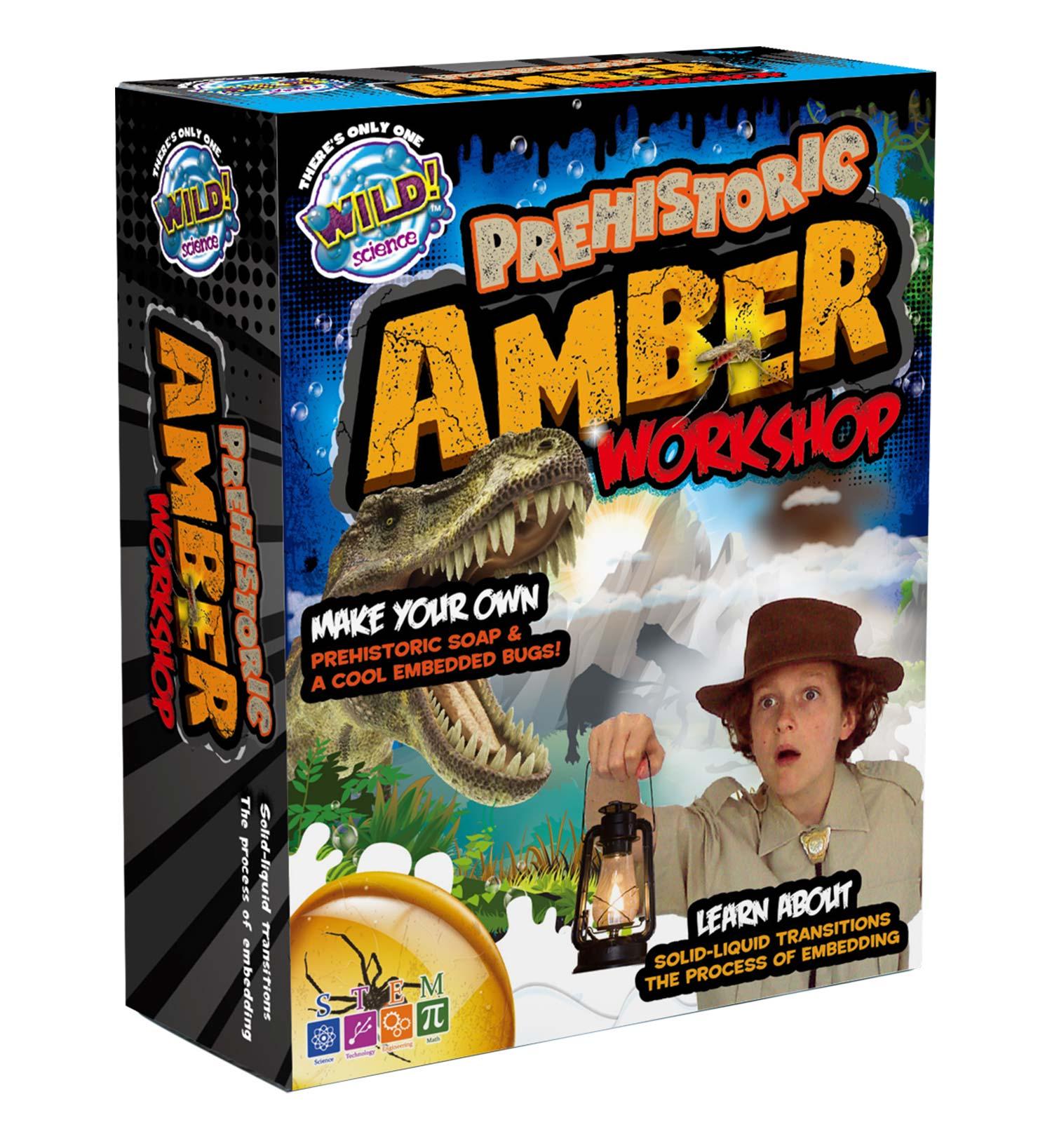 Prehistoric Amber Workshop