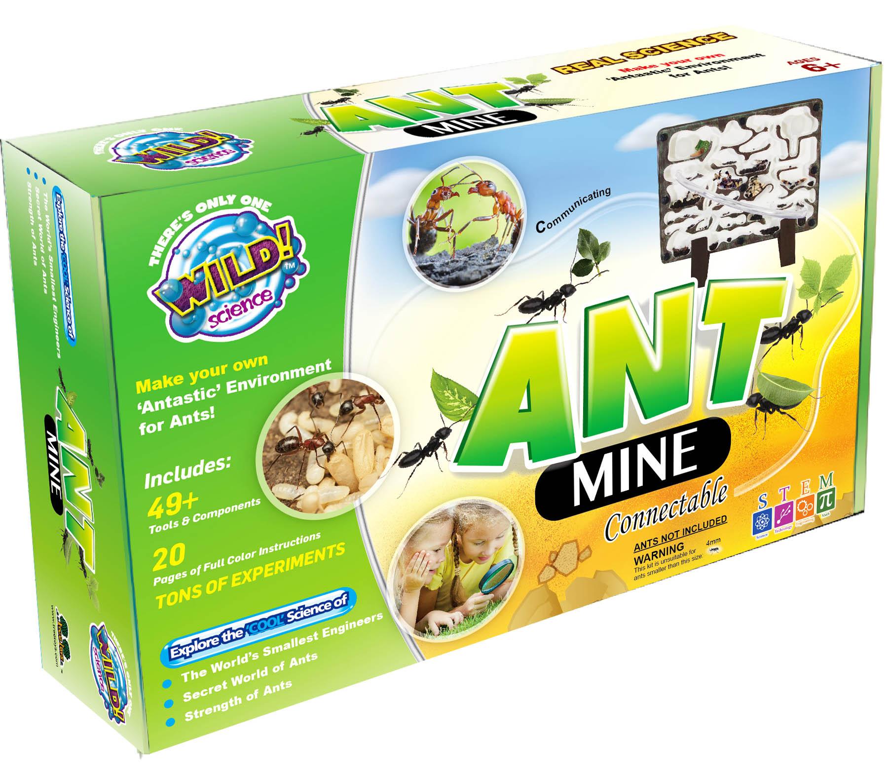 Ant Mine