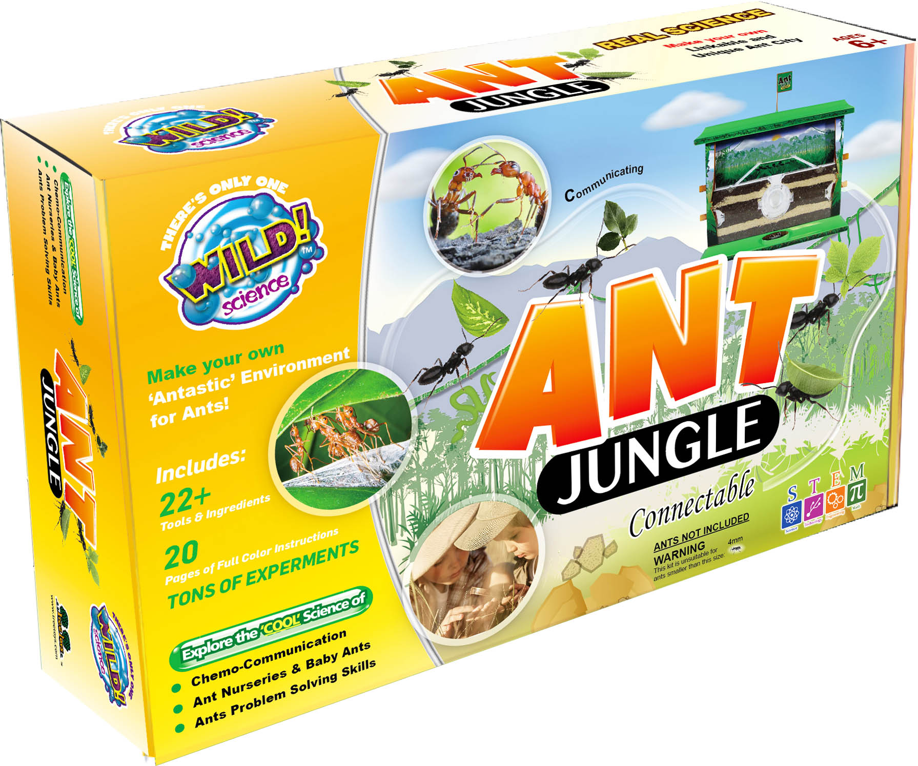 Ant Jungle